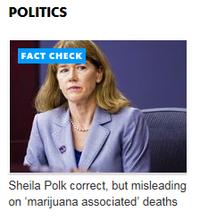 Polk fact check pundit partial